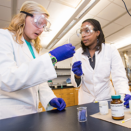 Students in Professor Adam Offenbacher's general chemistry class participate in a lab.